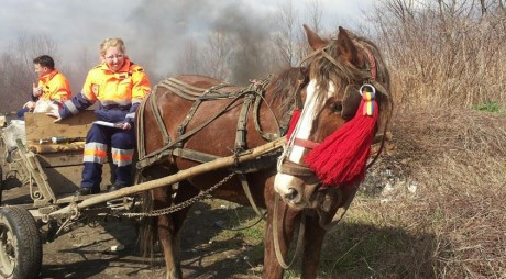 """""""Ambulanța""""  cu un cal putere, la datorie!"""