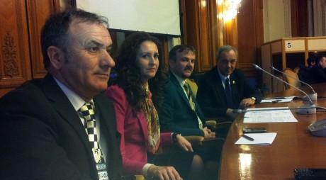 Desființarea judecătoriilor din Hațeg și Orăștie, respinsă de deputații din Comisia juridică