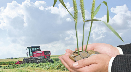 Din 2015, fermierii activi și bisericile primesc bani de la APIA