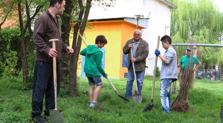 """""""Plantează un pom pentru viitor"""". Aproximativ 1000 de copaci vor fi sădiți de societatea civilă în Deva"""