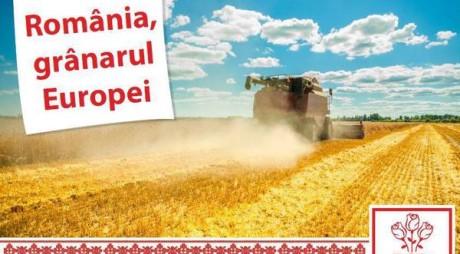 """PSD este """"mândru că suntem români"""" cu un afiş fotografiat în Belarus?"""