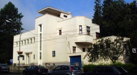 Polițiștii au recuperat 10 tablouri furate din Casa dr. Petru Groza
