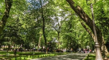 Parcul Cetate, inima vieții culturale și sportive