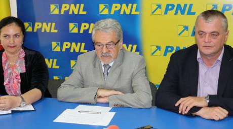 DIN NOU ÎMPREUNĂ! MOLOȚ și GLIGOR anunță FUZIUNEA dintre PNL și PDL