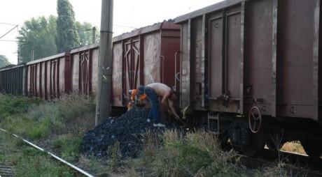 Aninosean prins la furat de cărbune