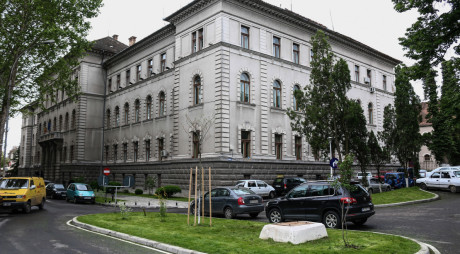 Traficanţi de droguri, condamnaţi de Tribunalul Hunedoara