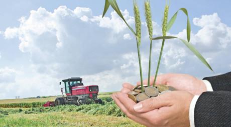 APIA: Anunț important pentru fermieri