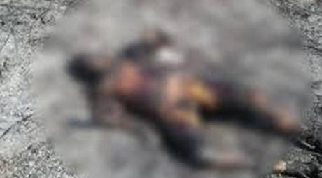 Descoperire MACABRĂ, pe marginea DN7 | Un câine s-a întors la stăpân cu mâna unui cadavru carbonizat