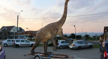 ÎN SFÂRȘIT, ACASĂ! Magyarosaurus dacus  a ajuns la Hațeg