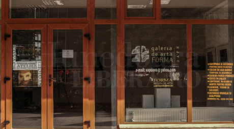 """Expoziţie de excepţie la Galeria """"Forma"""" din Deva"""
