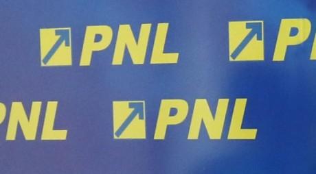 Cine sunt noii șefi ai organizațiilor PNL Hunedoara și Simeria
