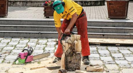 A cumpărat lemn fără documente, iar polițiștii I-au confiscat și i-au dat amendă