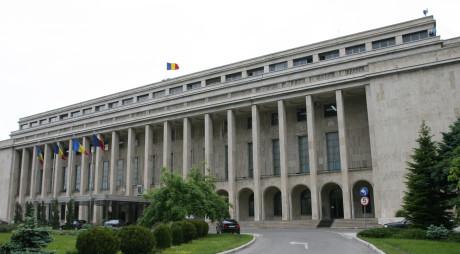 S-a legalizat traseismul politic | Ordonanţa de Urgenţă privind migraţia primarilor a fost adoptată de Guvern