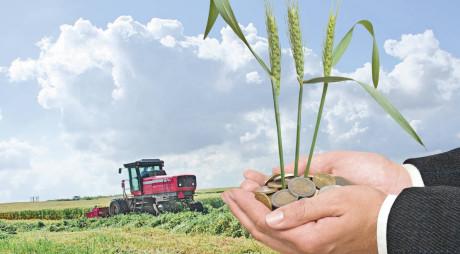 Începând de azi, APIA plătește avansurile la subvențiile pe suprafață