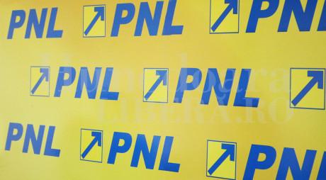 SURSE: Cine îi va lua locul lui Iohannis la şefia PNL
