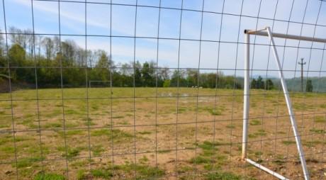 O primărie din vestul țării a investit 3 MILIARDE într-un teren de fotbal pe care pasc oile | FOTO
