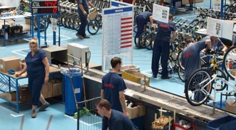 Fabrică de biciclete Decathlon la HAȚEG