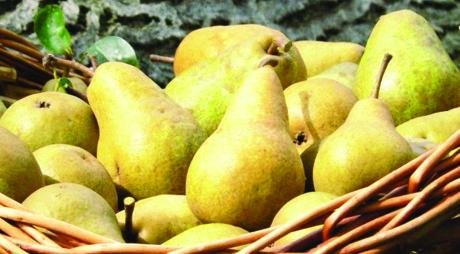 Un fruct delicios te scapă de TENSIUNE, COLESTEROL, DIABET şi OBEZITATE