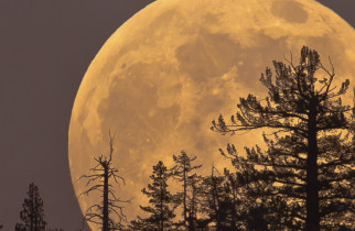 Fenomen astronomic rar: Ultima SuperLună din acest an. Când poate fi văzută pe cerul României