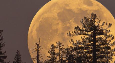 SUPER LUNA | Fenomenul va fi observat în noaptea de duminică spre luni