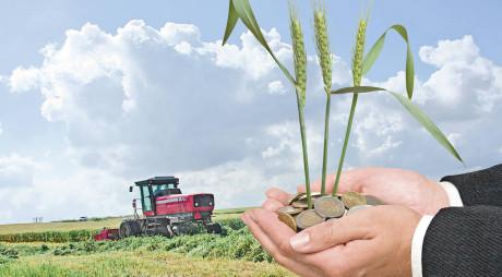 Pe 16 octombrie va începe plata avansurilor din subvenții pentru cei un milion de fermieri înscriși la APIA