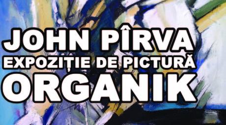 JOHN PÎRVA | Expoziție personală – Galeria de Artă FORMA, Deva
