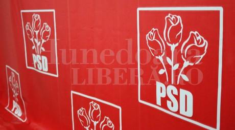 CREŞTE numărul consilierilor judeţeni ai PSD