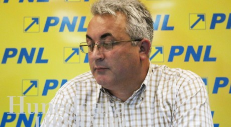Un lider PNL desfiinţează proiectele lui Mircea MOLOŢ