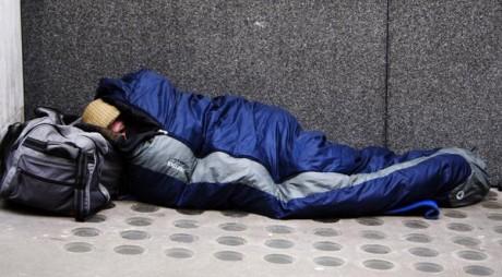 Lupenean fără adăpost, salvat de jandarmi