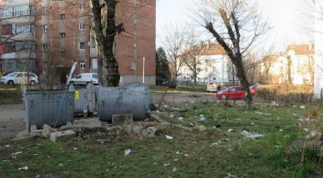 Scapă județul Hunedoara de containerele de gunoi insalubre și inestetice?