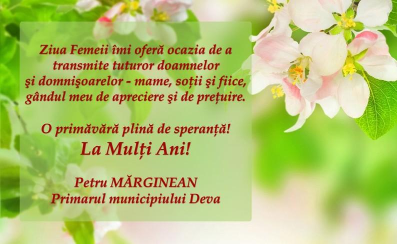 Mesaj Primar Marginean