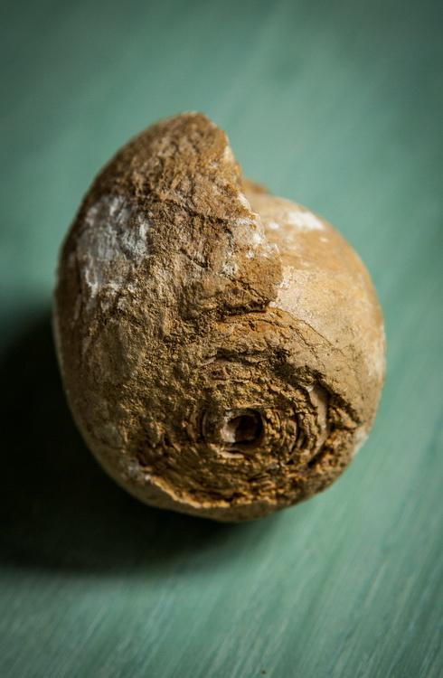 geoparc-5