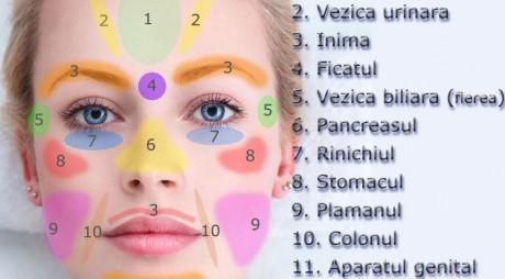 11 zone ale feţei care spun totul despre sănătatea ta