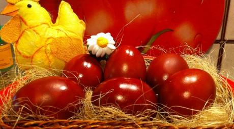 Câte ouă pe zi putem consuma fără riscuri pentru sănătate