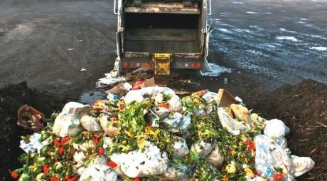 Românii sunt campioni la aruncat mâncare