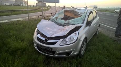 Accident. Maşină DISTRUSĂ de un cal