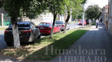 EXEMPLU de PRIMAR: Şi-a parcat maşina pe zona verde