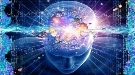 În curând, oamenii își vor putea stoca creierul pe un calculator pentru a trăi veșnic