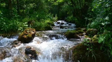 Parcul Natural Grădiștea Muncelului-Cioclovina, comoara naturii de la poalele Masivului Șureanu