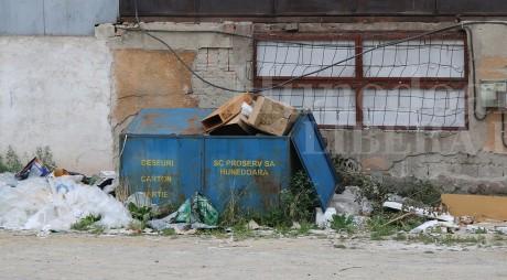 Hunedoara | A fost sau nu favorizată SC PROSERV SA la plata facturilor?