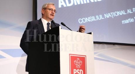 Liviu Dragnea, susținut de PSD Hunedoara la șefia partidului