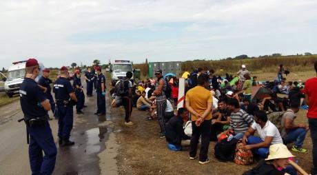 Migranții sirieni și irakieni au ajuns în județul Hunedoara