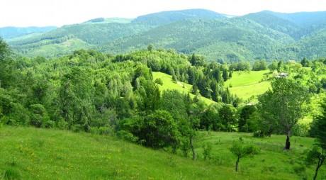 Câmpu lui Neag – satul momârlanilor de la poalele Retezatului