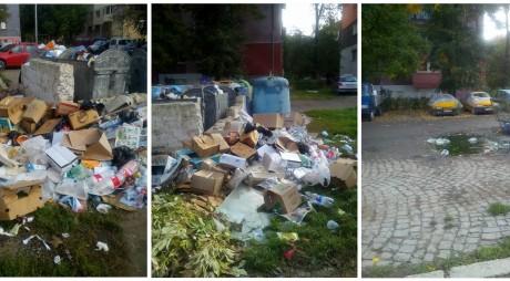 Hunedoara: Informații privind depozitarea deșeurilor voluminoase