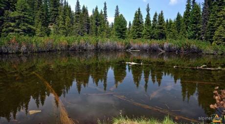 Tăul dintre Brazi, misteriosul lac din Parcul Naţional Retezat