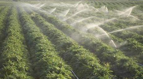 Fondurile europene alocate pentru investiţii în sisteme de irigaţii au fost epuizate
