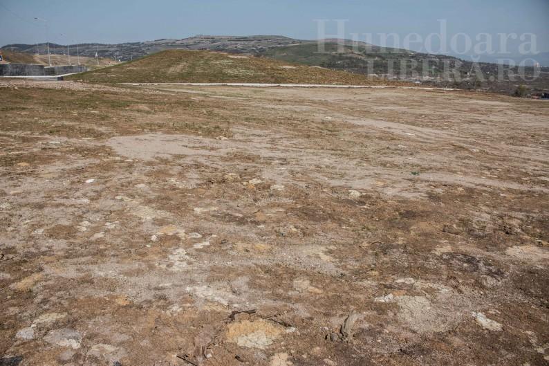 Carmen Harau Viorel Arion complex industrial Hunedoara pensionari (14)