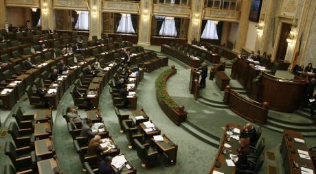 """Telemunca"", în dezbatere la Senat"