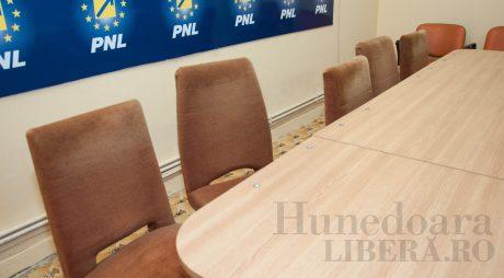 Surse: Alegeri în PNL, din martie