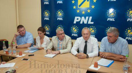 OFICIAL | Listele PNL pentru parlamentare